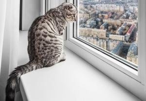 ako na okná Bratislava